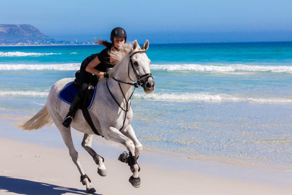 Horse Riding On The Beach
